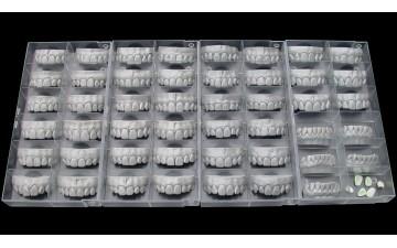Модуль Exocad Tooth Library