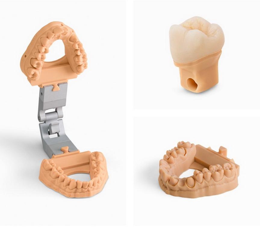 FormLabs Dental Model